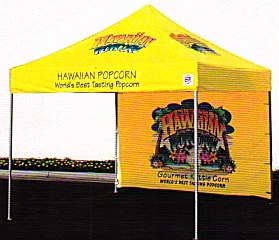 EZ UP Canopy u0026 Tents  sc 1 st  EZ Up Canopy Tents EZ Up Tent Retail Scales Battery Operated & Asteele.com: E-Z UP Canopy Tent Awning Tents u0026 Shelter